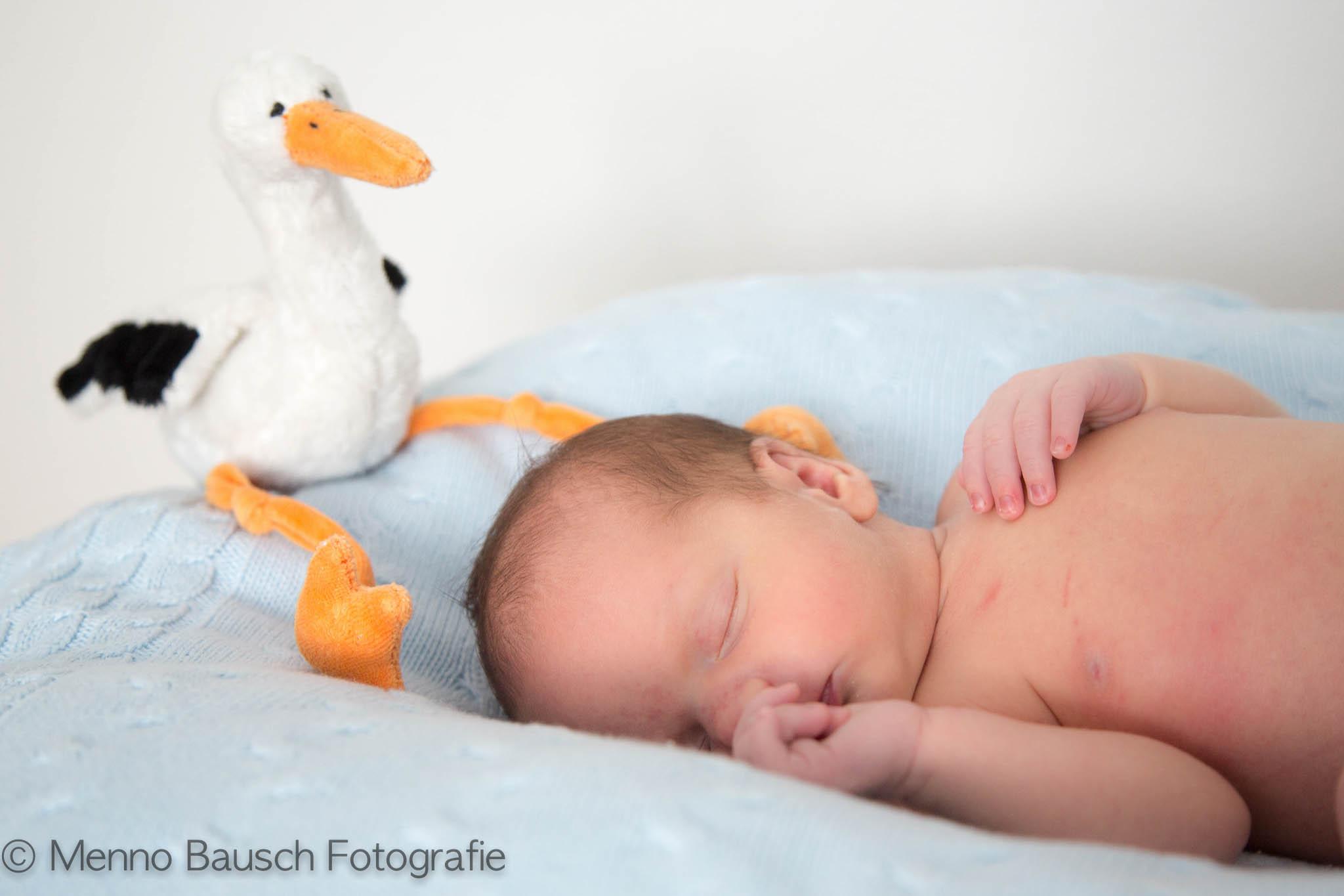 Menno Bausch Fotografie21-2