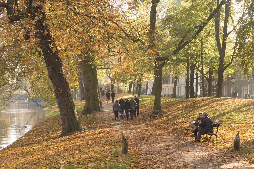 151101 herfst in Utrecht 1